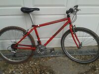 "Red Classic Specialized ""Rock Hopper"""