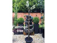 Lillies (giant) Japanese acer tree, Flamingo tree,