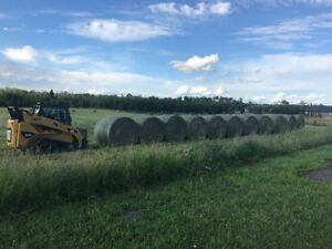 Large round bales. 2nd cut hay very nice call Ross 7807178004