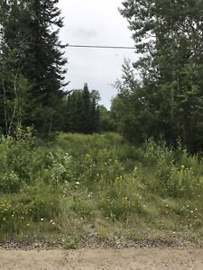 25 acres on MacLean Drive just past Laforest Road