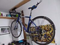 Giant SCR Ltd Road Bike