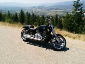 2012 Harley Davidson V-ROD Mint condition