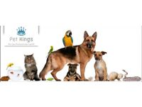 Lucrative Pet Sitting Company For Sale CARDIFF