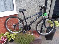 """mountain bike Apollo unisex 14"""" frame ( x rated) as new bargain"""