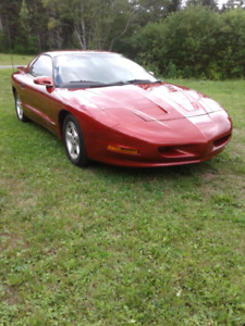 1997 Pontiac Firebird for sale