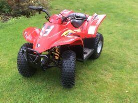 E-TON Viper 40E children's quad bike