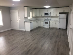 Auguston East Abbotsford Brand New Basement Suite for Rent!