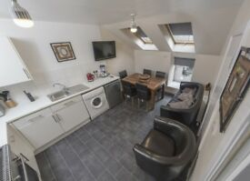 3 Bedroom apartment, 4 beds spacious apartment beside Edinburgh university