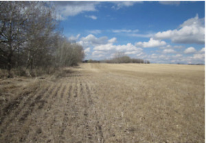 Farm land 77 acres 5 miles to Morinville 10min to St. Albert