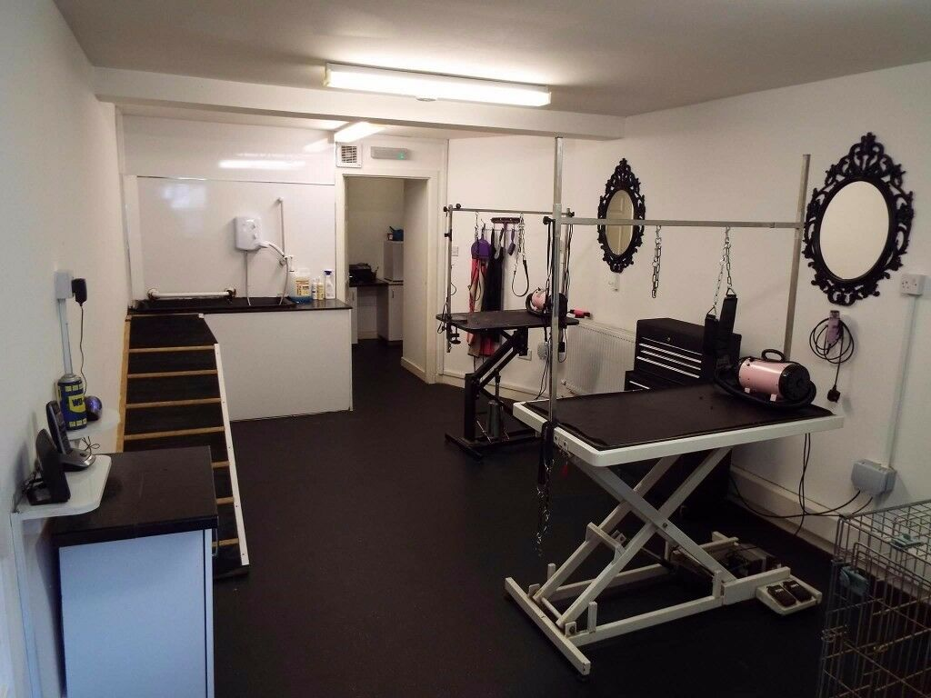 Dog Grooming Salon Buisness For Sale In Wishaw North Lanarkshire