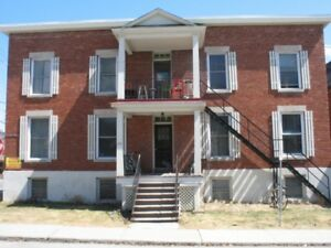 One Bedroom Basement Apartment-Near Main.& Lees-Avail Sept. 1