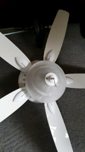 5 blade ceiling fan with light fixture