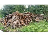 (All you can take) Wood burner logs. trunks.