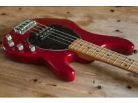 MusicMan Sterling USA Bass. EBMM American made in Translucent red + hybrid hard case.