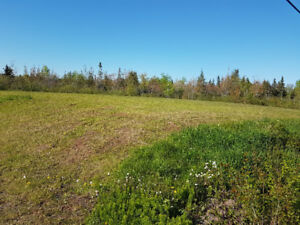 Great Deal for PRIME property in Wellington, PEI