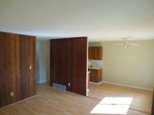 2 bedroom & den(4plex in Normandeau (pet friendly & Low deposit)