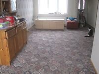Free Lounge carpet