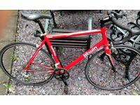 Road Bike - Triban 3 - Alu Frame, Carbon Fork