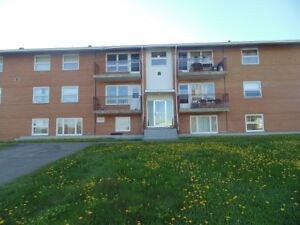 2 Bedroom apartment on Judges Terrace! UTILITIES INCLUDED!