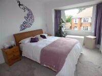 BIG DOUBLE bedroom in very well connected safe area in the best flatshare ever!