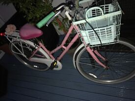 Resprayed women's bike (customised)