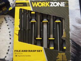 Workzone File and Rasp Set.