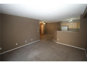 Move in ready!  2 bedroom condo for rent in Airdrie.