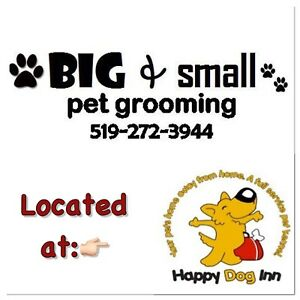 Big & Small Pet Grooming Services