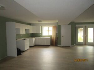 Beautiful Brand House Basement Suite For Rent