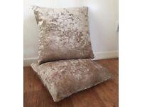 Champagne Velvet Cushions x2