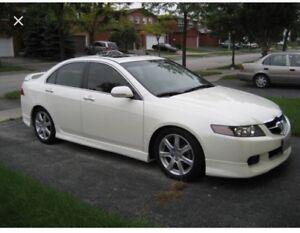 LOOKING FOR: Honda Civic Si, Acura TSX, CSX $5000