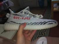 I want to buy YEEZY zebras