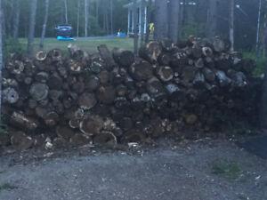 Dried Chunked Firewood