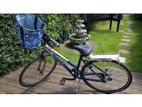 Gary Fisher Ladies Bike