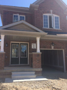 End UNIT:Brand new Townhome for Rent: Walness/Mclaughlin-Sept 1