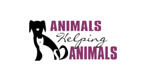 Professional Dog Walking and Pet Sitting Services Vancouver
