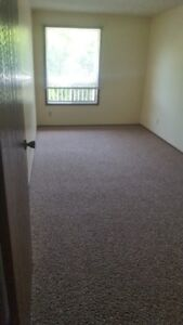 1 bedroom Adult only suite Available in Riverside