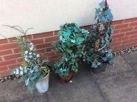 Artificial Plants x 3