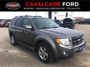 2010 Ford Escape Limited 4D Utility 4WD