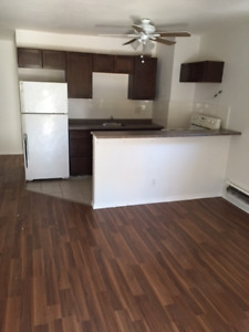 Small two bedroom two bathroom 1 minute walk to the subway