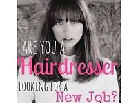 Experienced hair stylist required