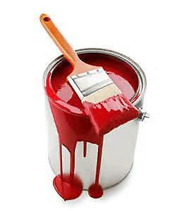 AFFORDABLE PAINTING-PSG -great rates
