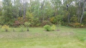 Excellent .69 acre Building Lot located off the Winnipeg River