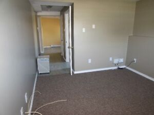 1 Bedroom Basement Apartment Available Aug 1 in Airport Hgts