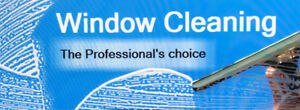 WINDOW CLEANING RHS LAVAGE DE VITRES