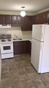 AVAILABLE NOW!!!  South facing bachelor unit in Over 55 Complex