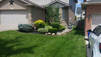 Express Landscaping