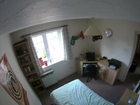 Single Bed Room in Spacious Furnished Flat