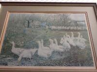 Alex Williams signed farmyard print