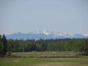 Ranch Land Acreage ~ Green Lake North Road ~ 1374.3 Acres